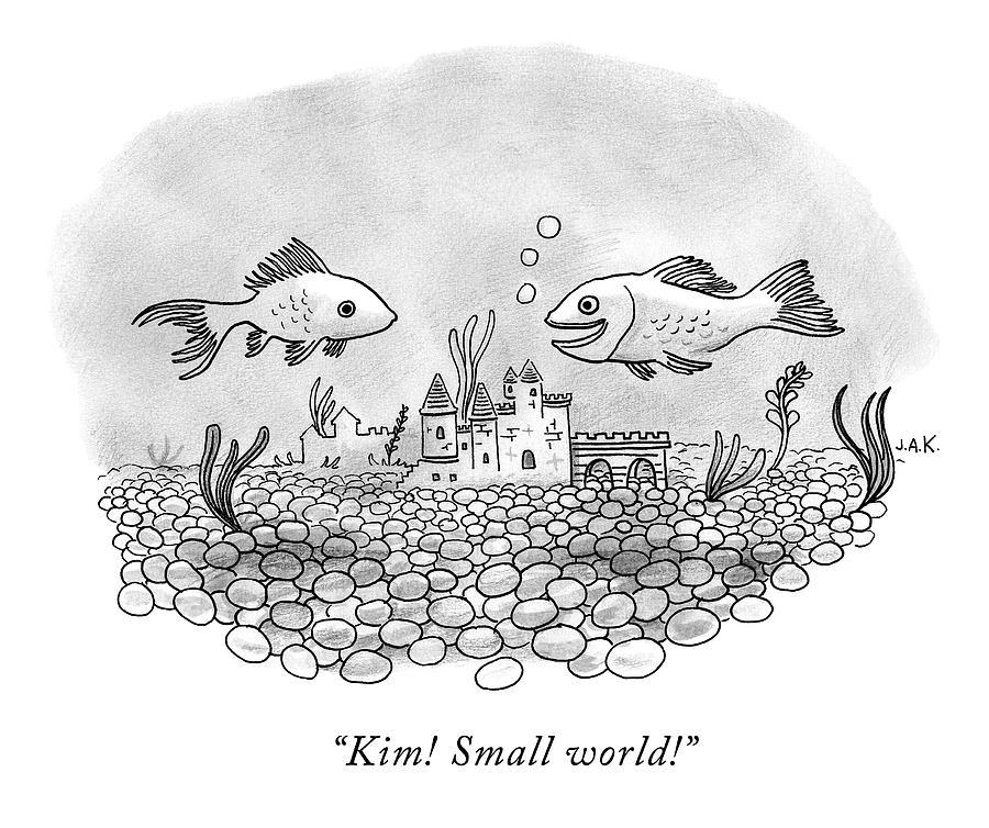 Two Goldfish In A Fishbowl Cross Paths Drawing by Jason Adam Katzenstein