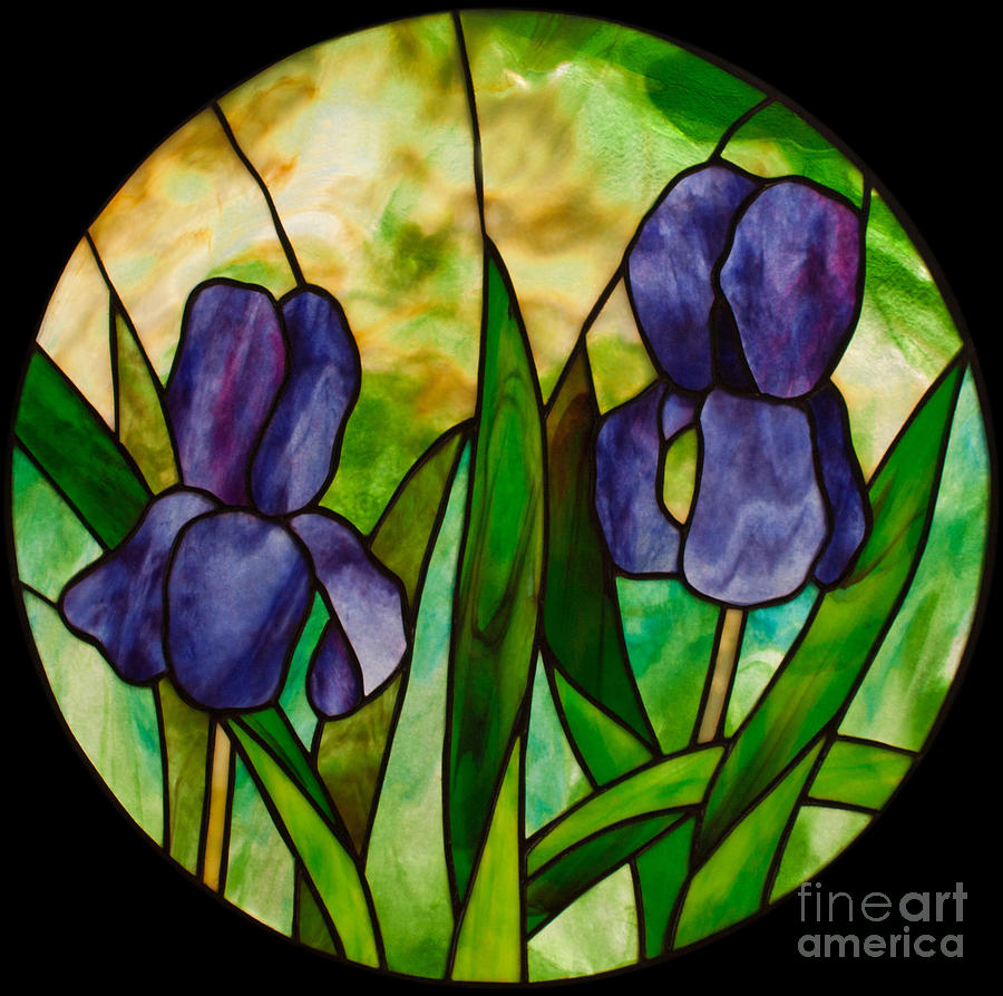 Two Irises Stained Glass Panel Glass Art - Two Irises by David Kennedy