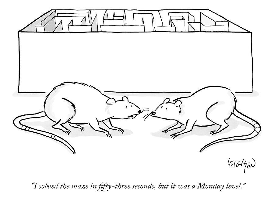 how to make a rat maze