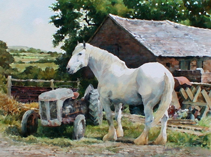 English Painting - Two Old Grays by Anthony Forster