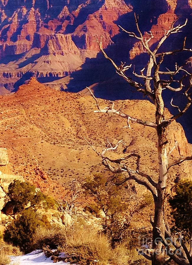 Landscape Photograph - Two One Hundred Eighty Three by Debbie L Foreman
