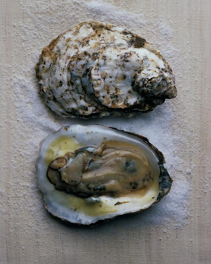 Two Oysters Photograph by Romulo Yanes