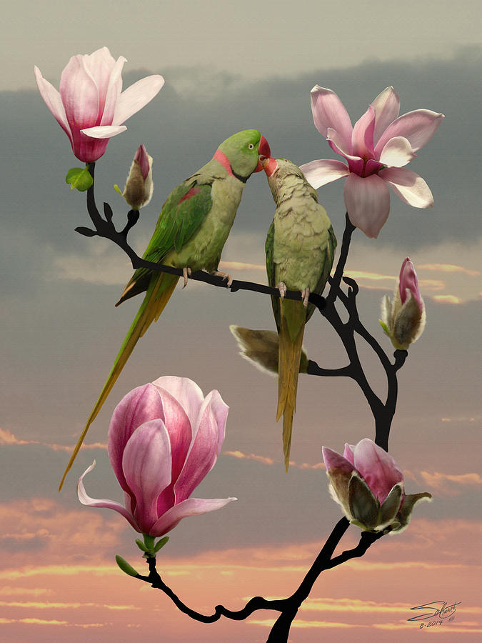 Alexandrine Parakeet Painting - Two Parrots In Magnolia Tree by M Spadecaller