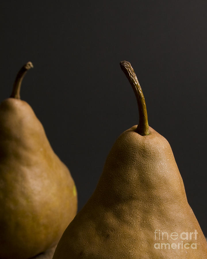Pears Photograph - Two Pears by Jennifer Kay Fogle
