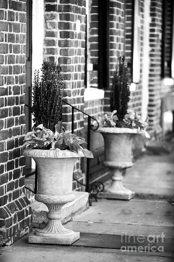 Planter Photograph - Two Planters By The Door by John Rizzuto