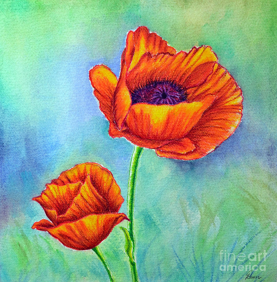 Poppies Painting - Two Poppies by Dion Dior