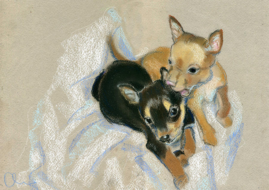 Animals Drawing - Two Puppies by Lelia Sorokina