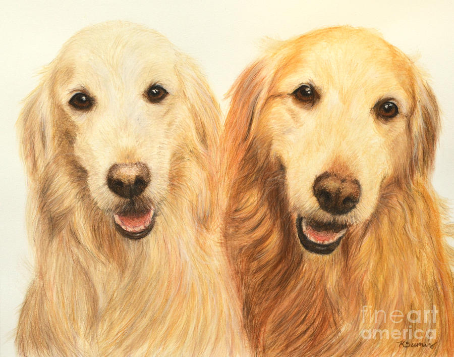 Two Retrievers Painted by Kate Sumners