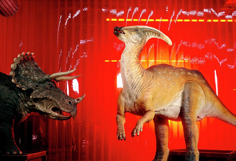 Dinosaur Photograph - Two Robotic Dinosaurs by Peter Menzel, Dinamation/science Photo Library