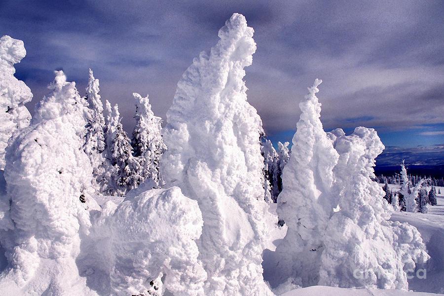 Snow Photograph - Two Top Mountain Loop Trail by Thomas R Fletcher
