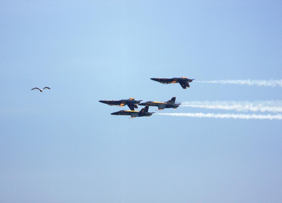 Blue Angels Photograph - Two Up Two Down by French Toast