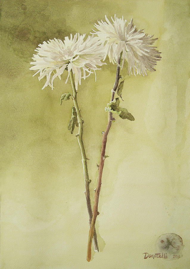 Chrysanthemums Painting - Two White Mums by Kathryn Donatelli