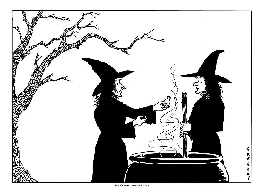 two witches  one stirring a cauldron by alex gregory