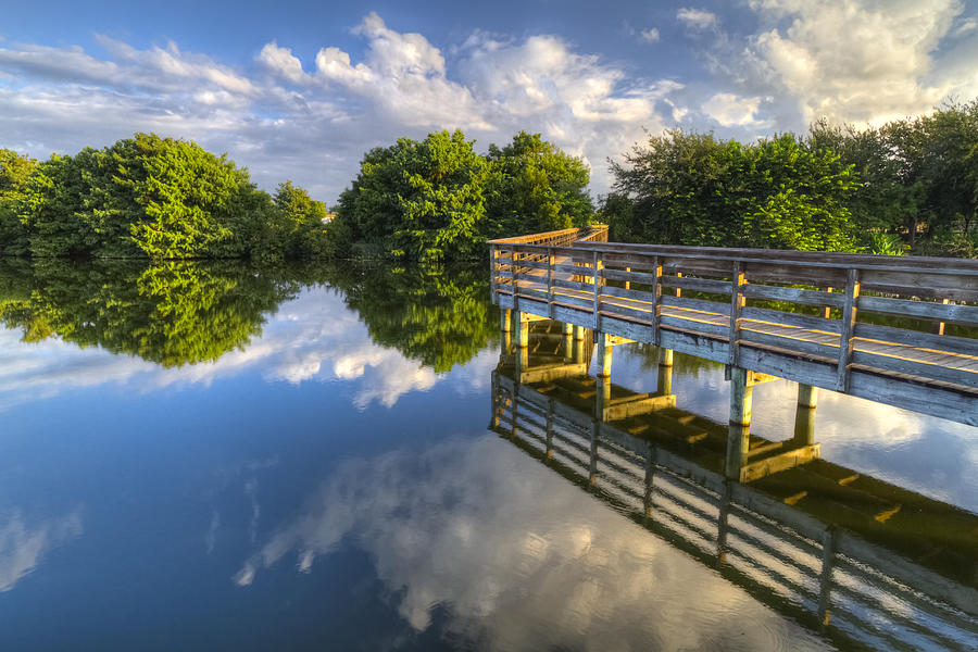 Clouds Photograph - Two Worlds At Wakodahatchee by Debra and Dave Vanderlaan