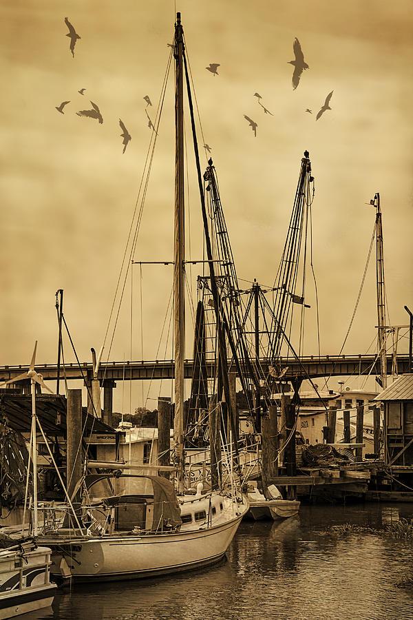 Tybee Island Shrimp Boats Photograph