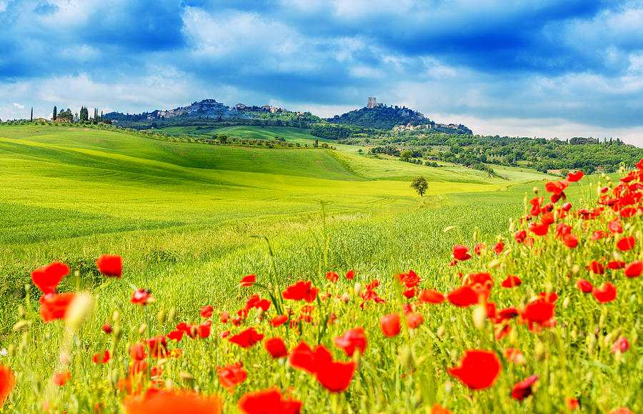 Typical Landscape Of Tuscany Photograph by Gehringj