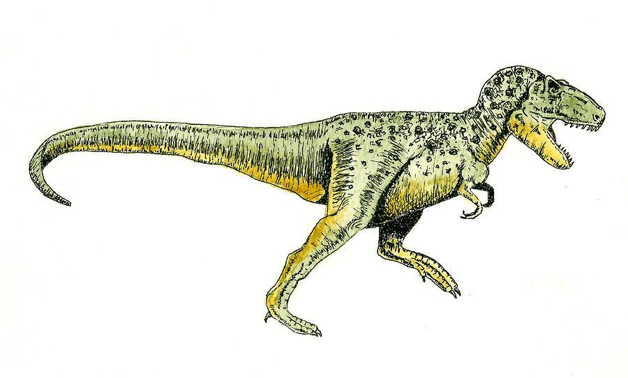Animals Painting - Tyrannosaurus Rex by Michael Vigliotti