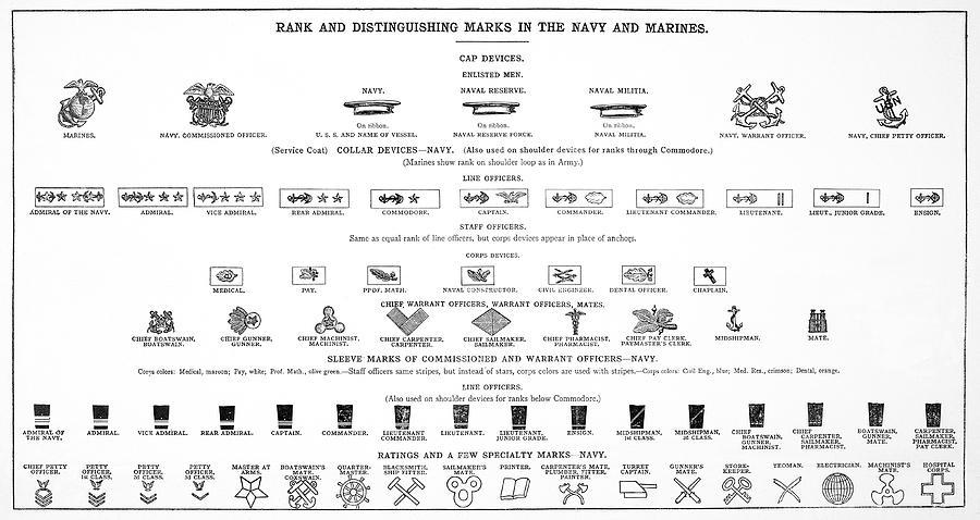 U S Navy Marine Rank Symbols 1918 Photograph By Daniel Hagerman