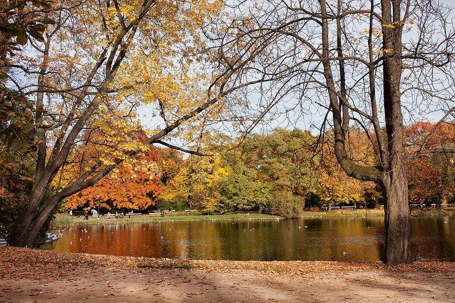 Pond Photograph - Ujazdowski Park In Warsaw by Artur Bogacki