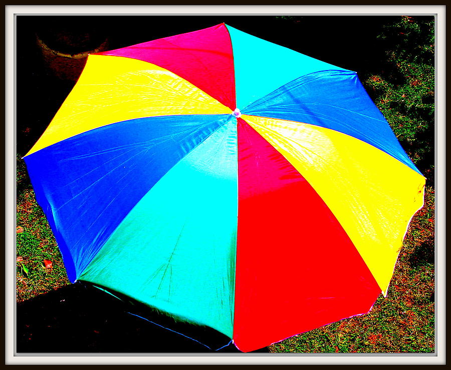 Butter Fly Photograph - Umbrella-2 by Anand Swaroop Manchiraju