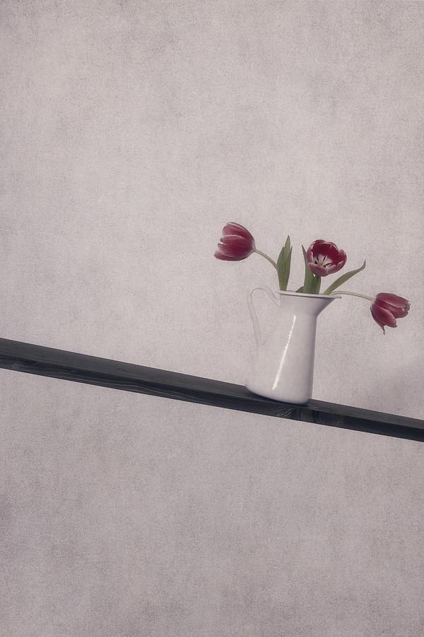 Tulip Photograph - Unbalanced Flowers by Joana Kruse