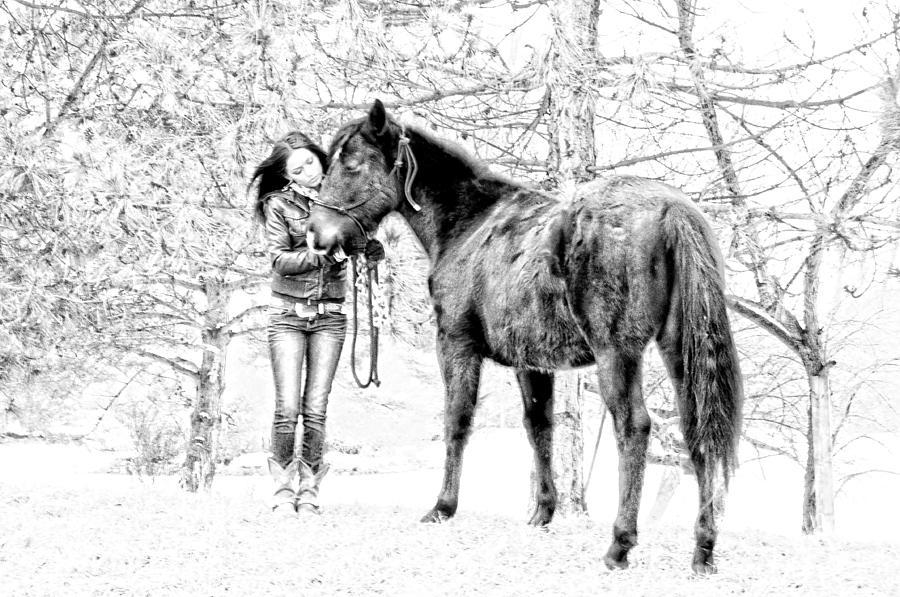 Horses Photograph - Unconditional Love by Frank Sciberras