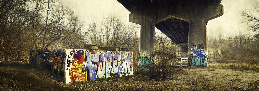 Under The Locust Street Bridge Photograph