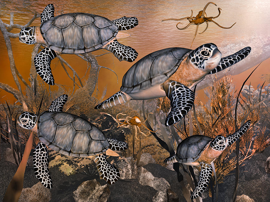 Sea Digital Art - Under The Red Sea by Betsy Knapp