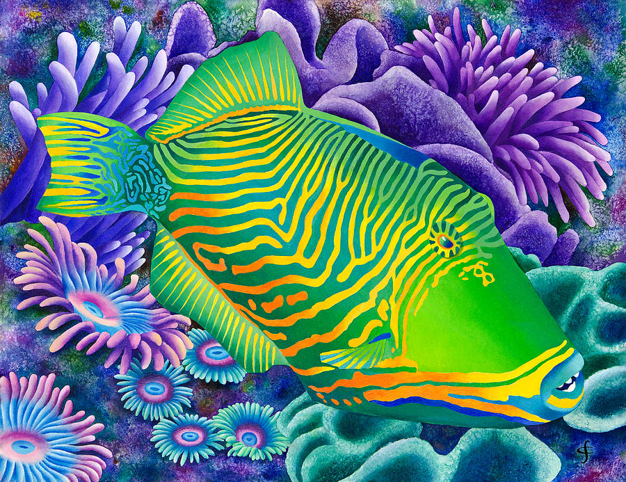 undulated trigger fish photograph by carolyn steele