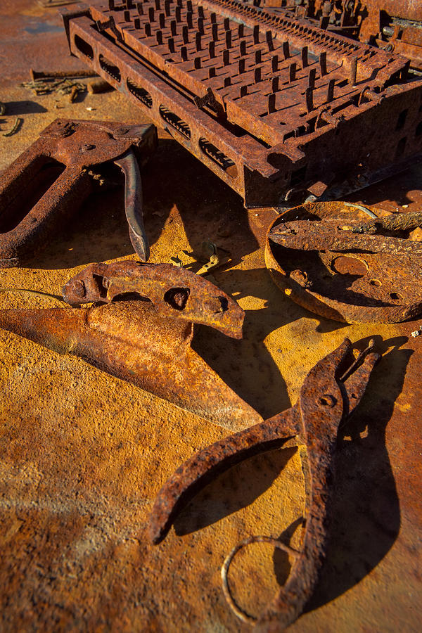 Rust Photograph - Unemployed by Scott Campbell