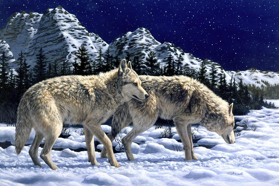 Wolf Painting - Wolves - Unfamiliar Territory by Crista Forest