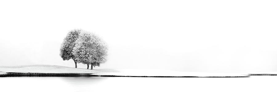 Lake Photograph - United #2 by Marc Huybrighs