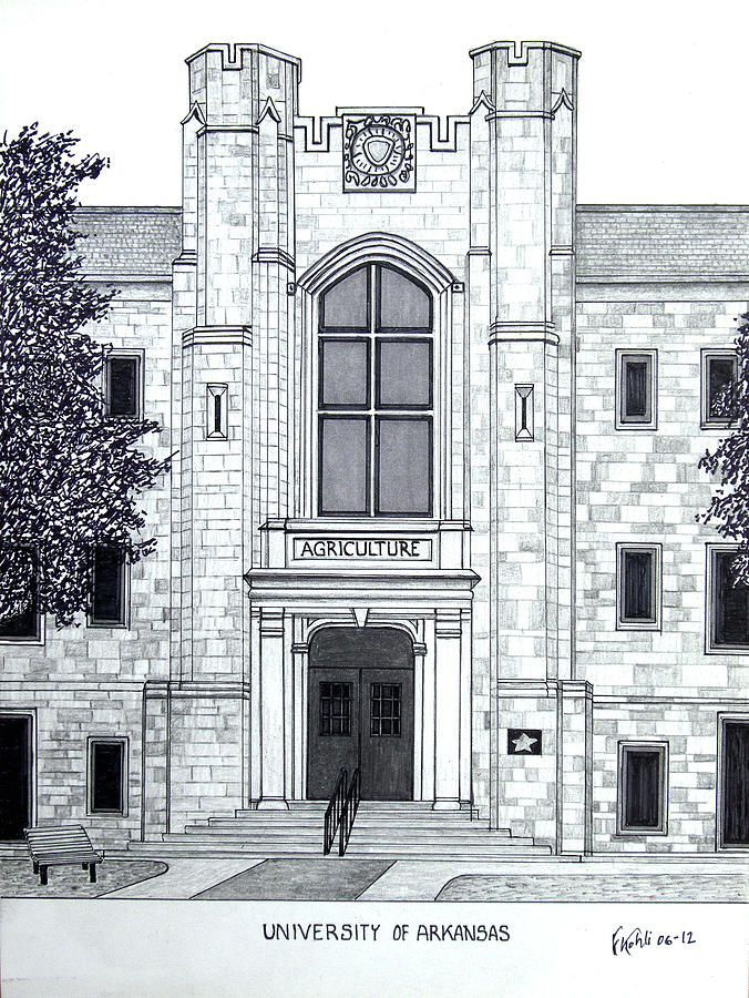 University Of Arkansas Pen And Ink Drawing Drawing - University Of Arkansas by Frederic Kohli