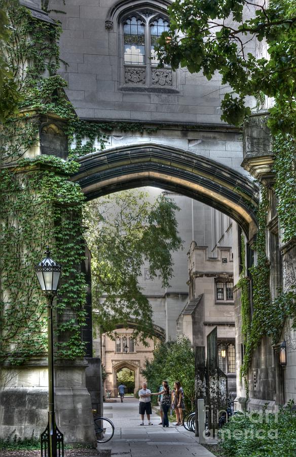 University Of Chicago Photograph - University Of Chicago Quad by David Bearden