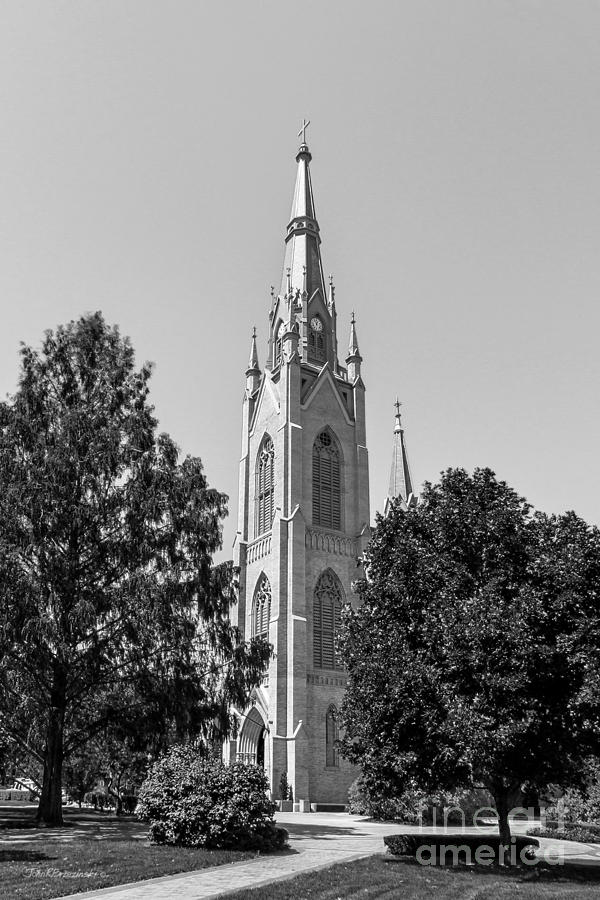 Big East Conference Photograph - University Of Notre Dame Basilica Of The Sacred Heart by University Icons