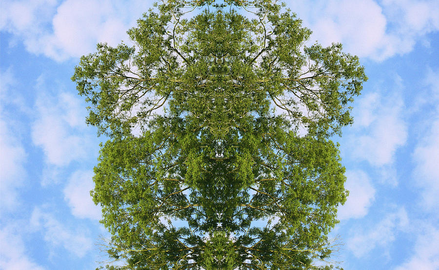 Kaleidoscopic Photograph - Unnatural 46 by Giovanni Cafagna