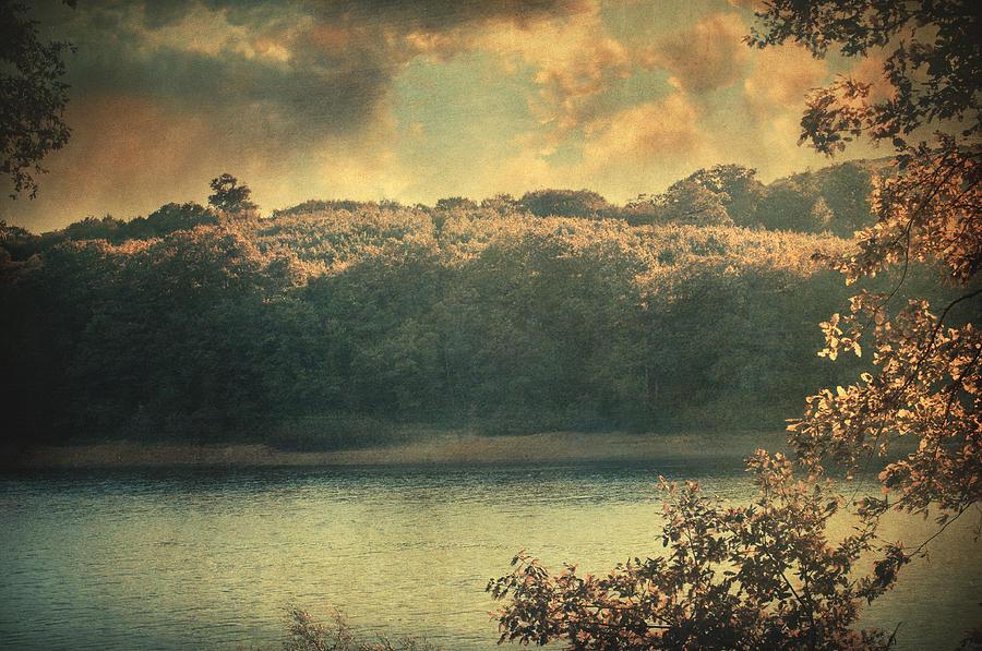 Woods Photograph - Unseen by Taylan Apukovska