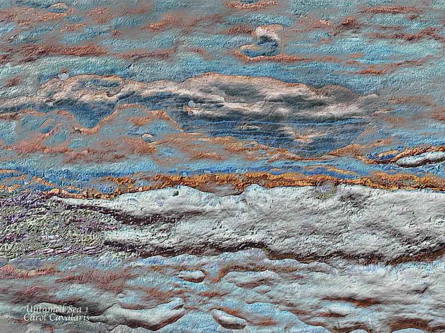 Seascape Mixed Media - Untamed Sea 1 by Carol Cavalaris
