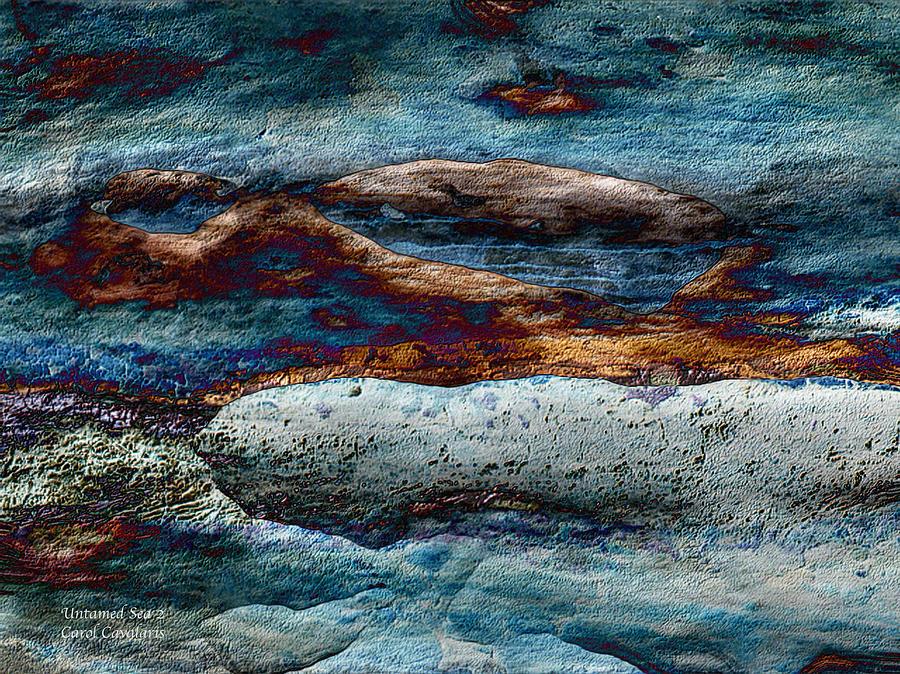 Seascape Mixed Media - Untamed Sea 2 by Carol Cavalaris