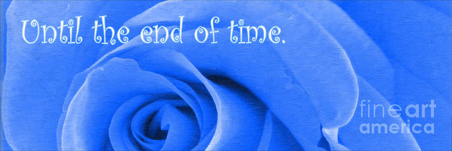 Until The End Of Time Photograph - Until The End Of Time by Barbara Griffin