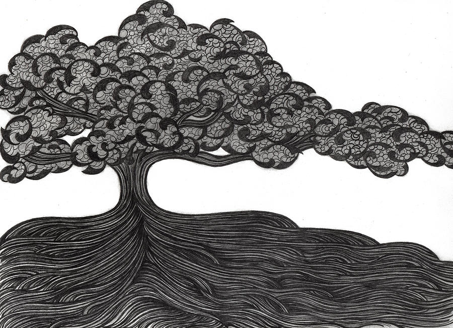Tree Drawing - Untitled 36 by Diana Durr