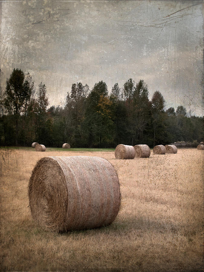 America Photograph - Untitled Hay Bale by Robert Tolchin