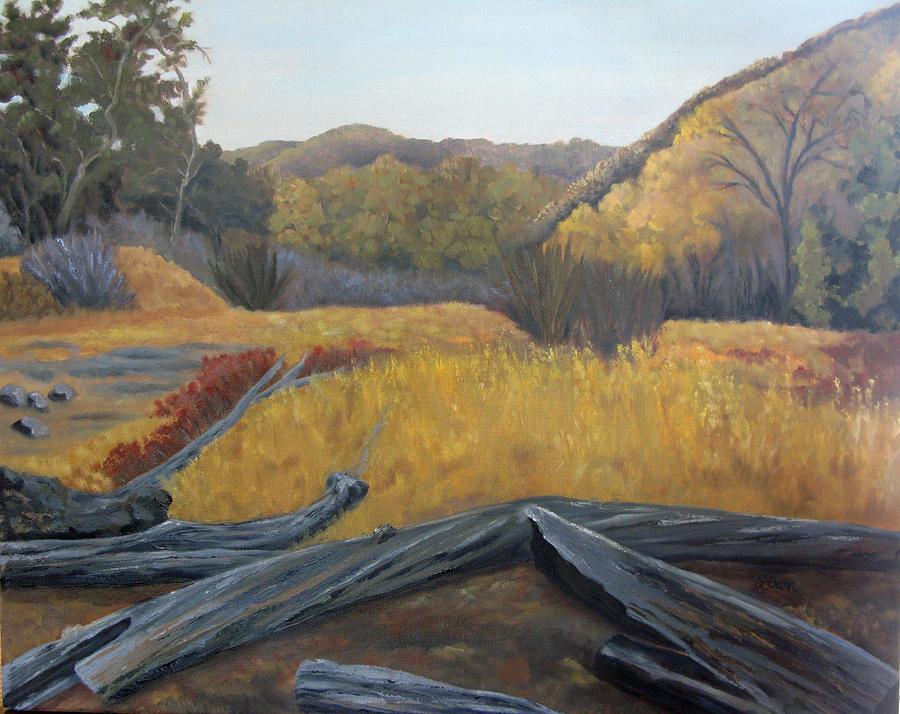 Placerita Canyon Santa Clarita CA  by Lisa Barr
