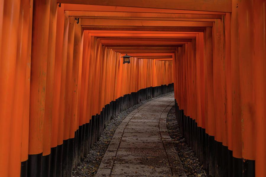 Tunnel Photograph - Untitled by Pawel Majewski