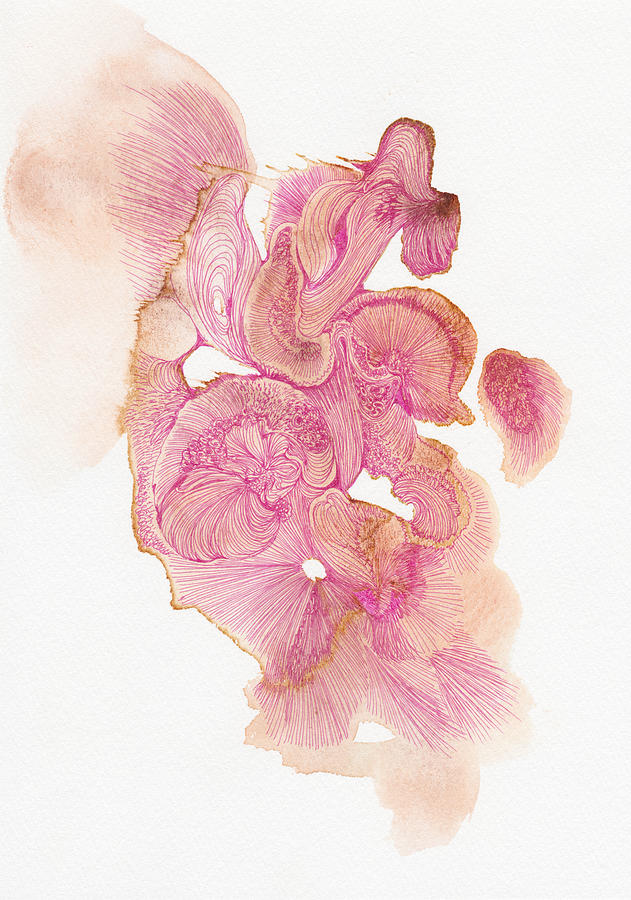 Organic Drawing - Untitled - #ss14dw002 by Satomi Sugimoto