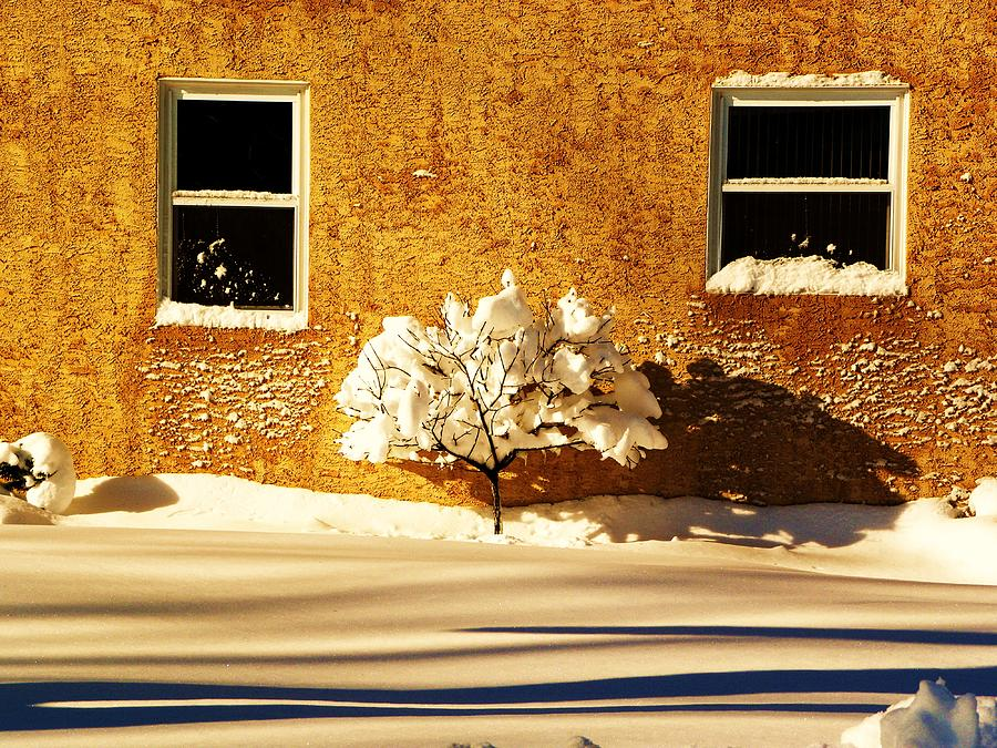 Snow Photograph - Untouched by Christian Rooney