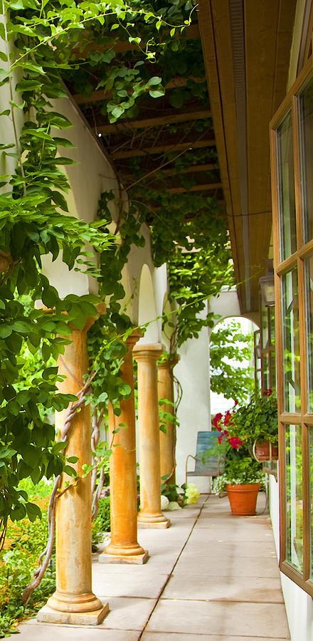 Garden Photograph - Up At The Villa by Theresa Tahara