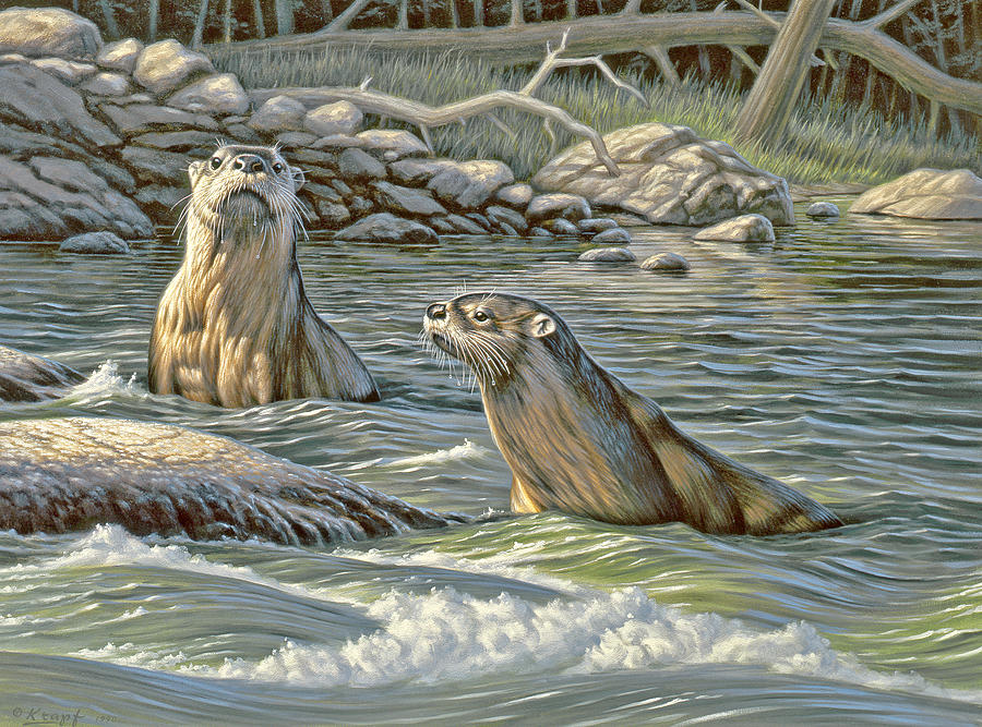 Wildlife Painting - Up For Air - River Otters by Paul Krapf