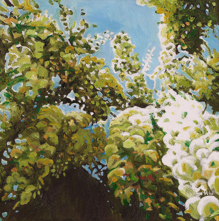 Wisteria Painting - Up into wisteria by Helen White
