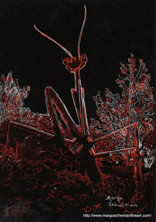 Preying Mantis in Moonlight by Margo Schwirian
